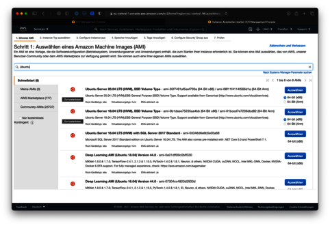 Ubuntu als Host für die EC2 Instanz
